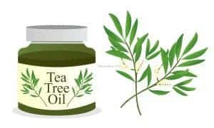 Pure Tea Tree Oil