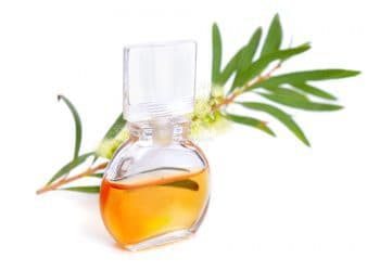 Tea Tree oil in a small bottle