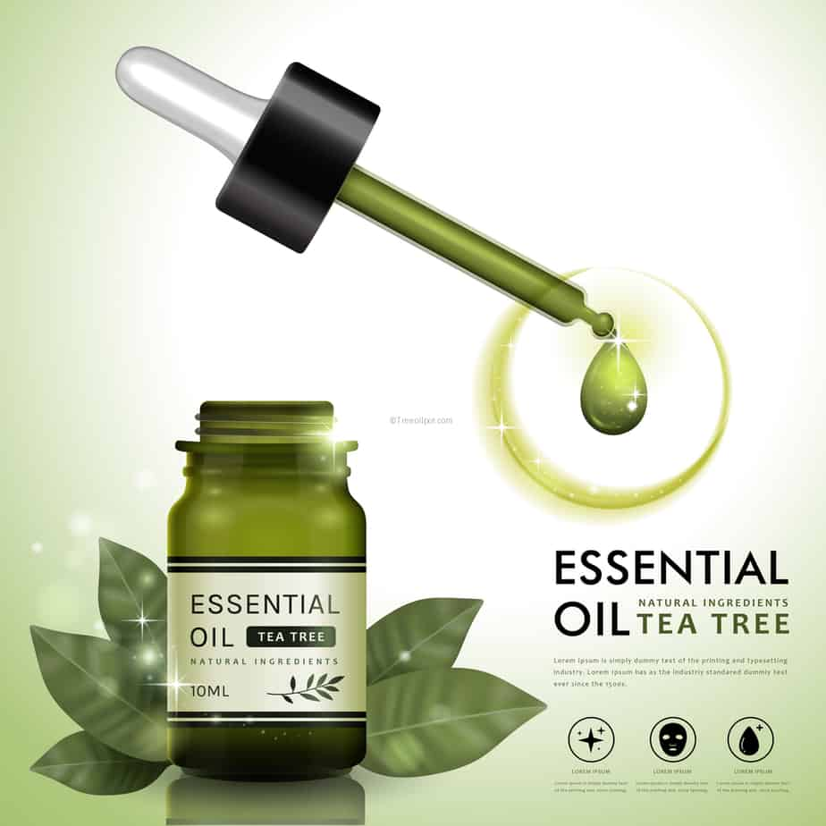 is tea tree oil effective in controlling While toxic if consumed, the oil has displayed strong antifungal, antiviral, and antibacterial qualities that are currently being researched to determine whether tea tree oil is an effective topical antimicrobial treatment used to treat both acne and insect bites, tea tree oil is widely available at most health stores.