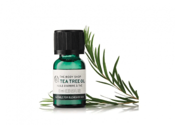 Buy Tea Tree Oil From Body Shop