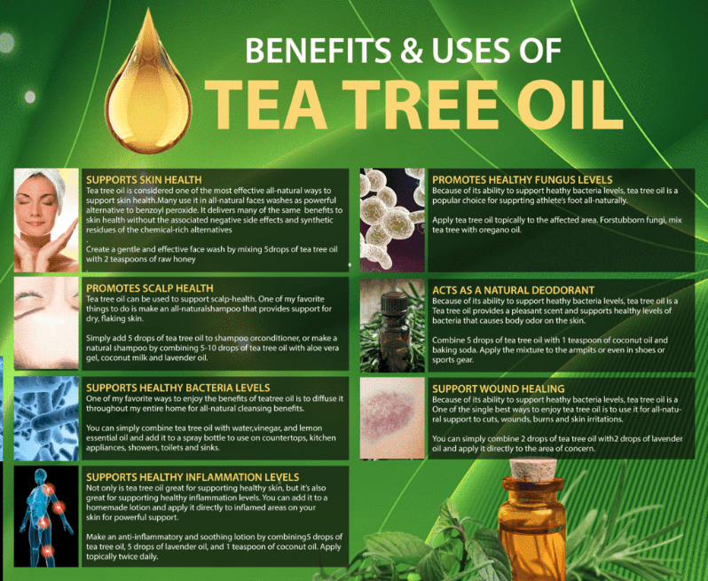 Benefits and uses of pure tea tree oil