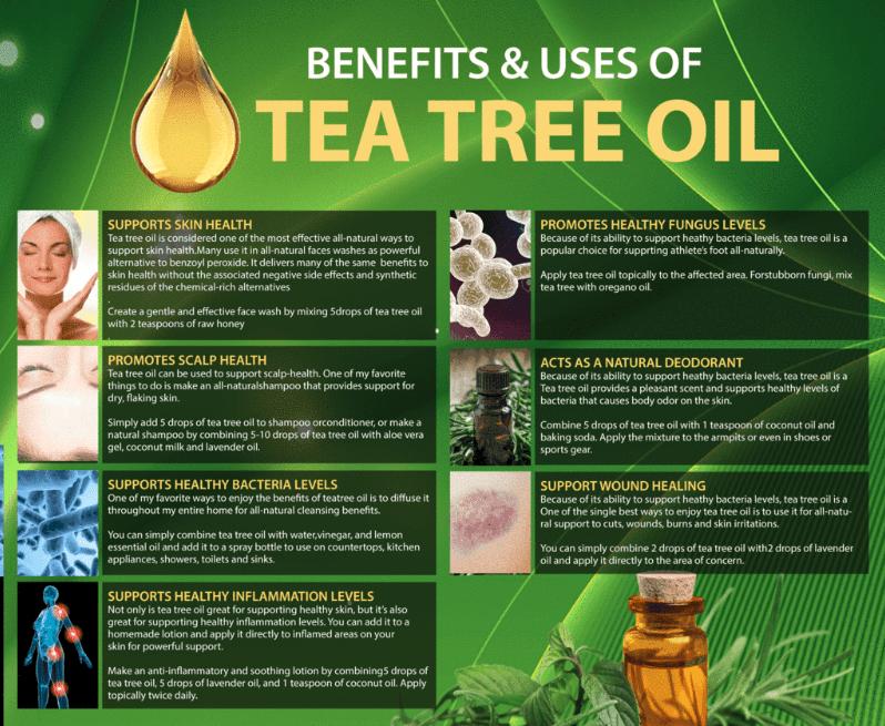 12 Popular Pure Tea Tree Oil Uses and
